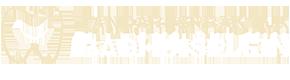 Tandartspraktijk Badhuisplein Logo